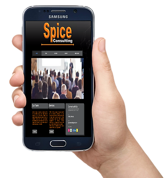 spicepic.png