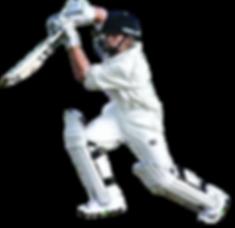 Cricket-Transparent-Images-PNG.png