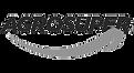 agrosuper_logo-removebg-preview.png