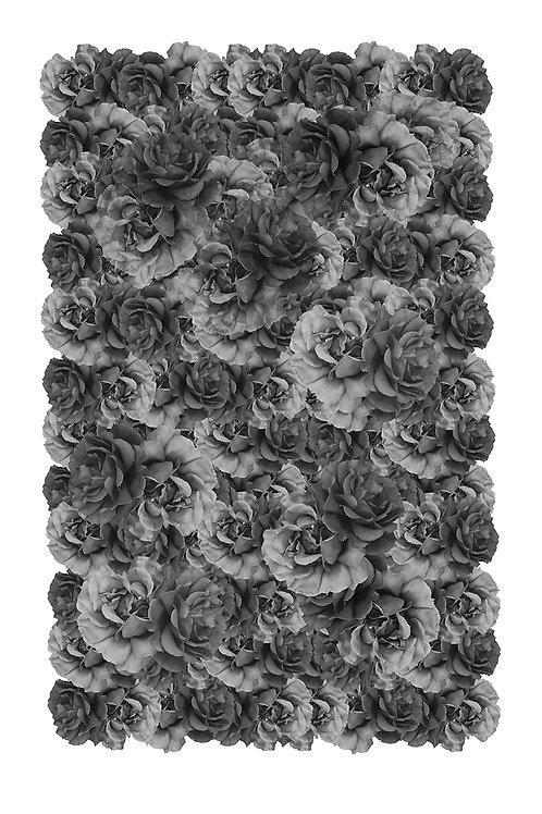 Back Roses  Digigraphie Format 40 x 60 cm