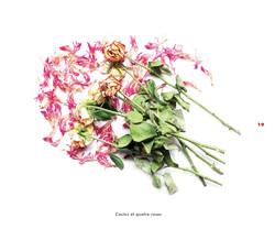 Fleurs et jardins imaginaires 19