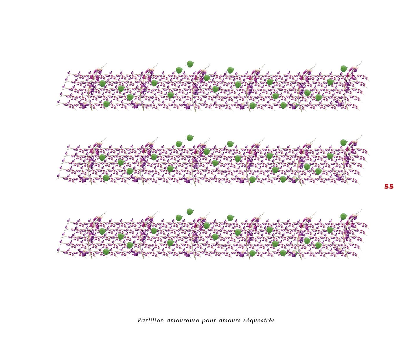 Fleurs et jardins imaginaires 55