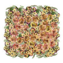 Les Roses.jpg