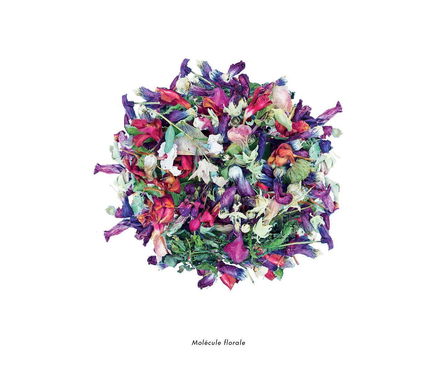 Fleurs et jardins imaginaires 28