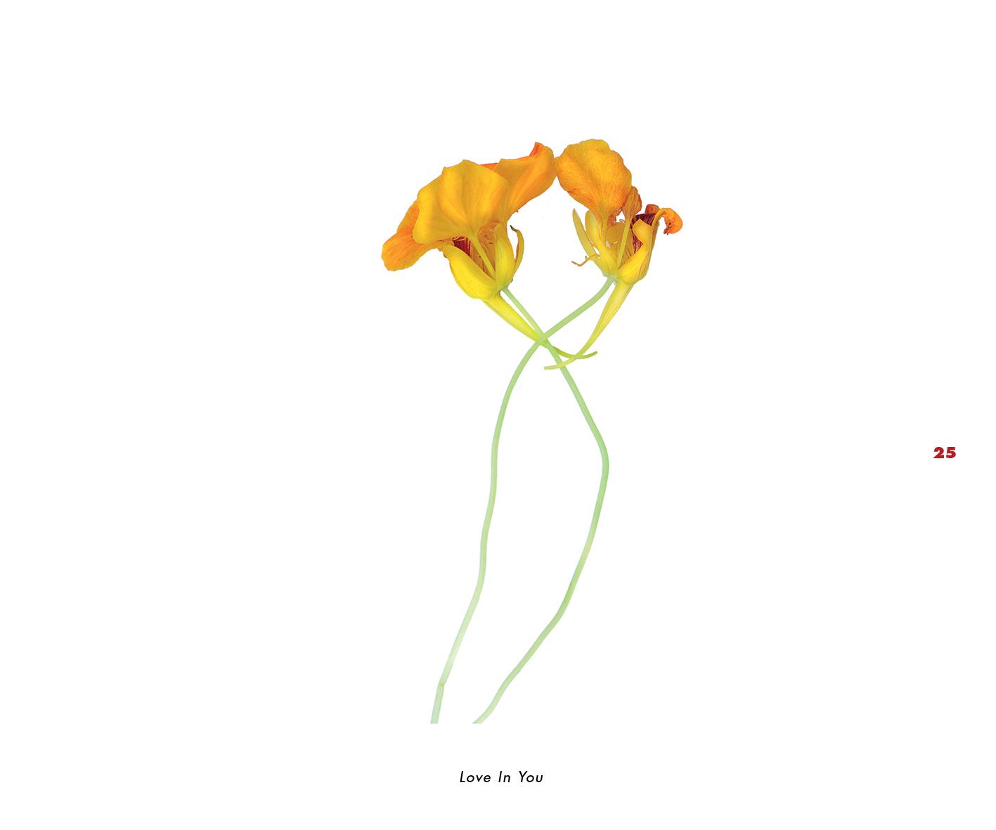 Fleurs et jardins imaginaires 25