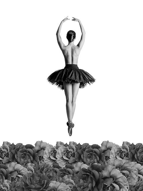 Dibond Tribute to Valentine Colasante B & W 50 x 67 cm