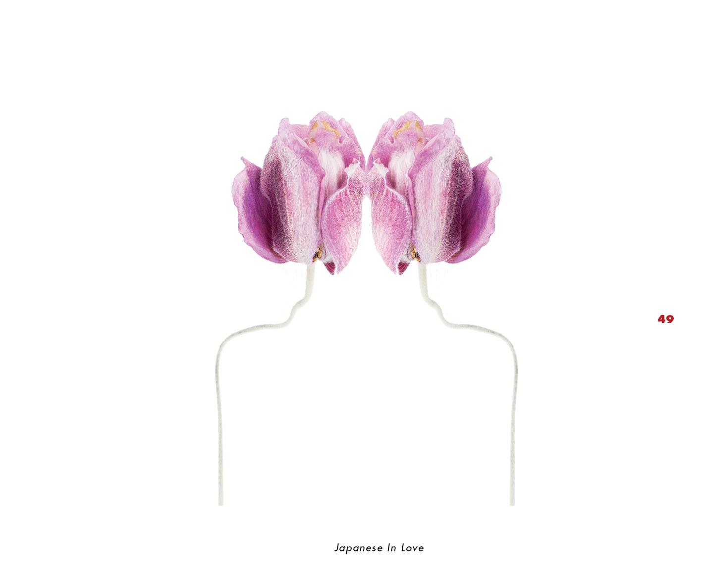 Fleurs et jardins imaginaires 49