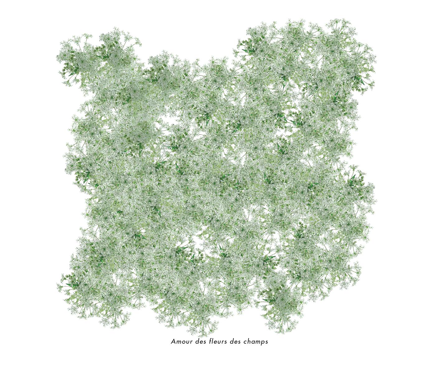 Fleurs et jardins imaginaires 40