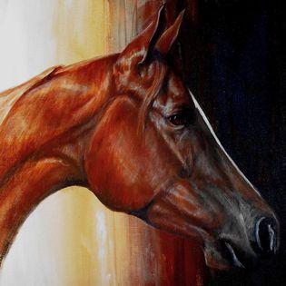 gail horse.jpg