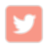 icons8-twitter-480 (1).png