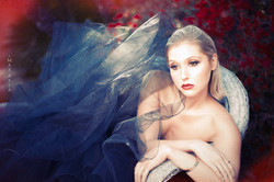 Max Aria Photography