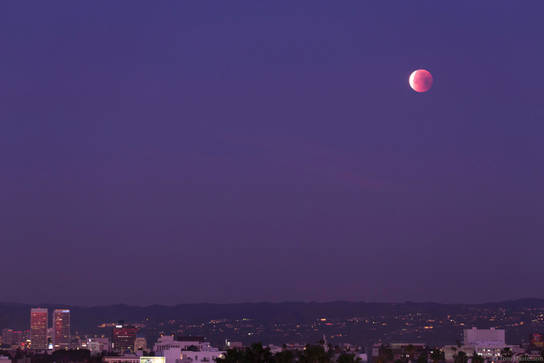 Lunar Eclipse Approaches the Horizon, Los Angeles, CA 1/31/2018