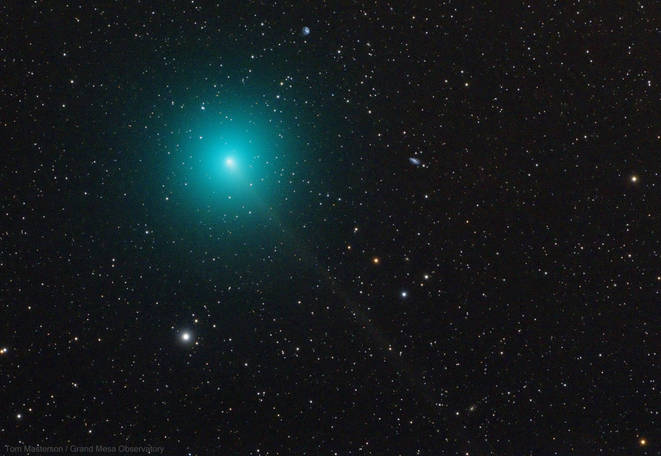 Comet 46P/Wirtanen OSC 11/26/2018 20:31-20:51 MST (cropped image)