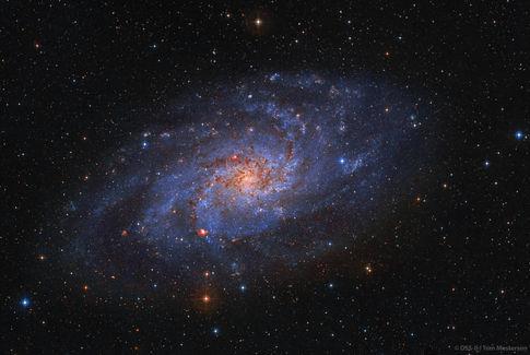 Triangulum Galaxy M33 DSS-II