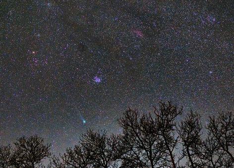 Lovejoy 2014 Q2, M45 The Pleiades, and NGC 1499 The California Nebula 1/16/2014