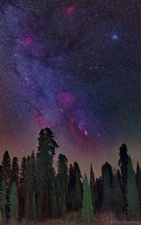 Sequoia Crest Winter Milky Way
