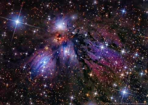 Celestial Drama in NGC 2170