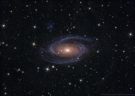 Galactic Maelstrom M81