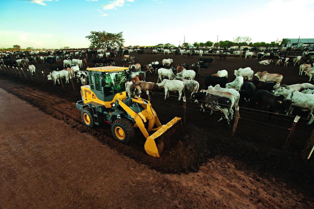 Los feedlots de más de 1000 animales deberían tener en su equipamiento una cargadora de ruedas articuladas, con balde de al menos 1 m3, de capacidad.
