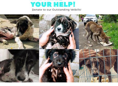 Urgently help needed!