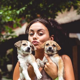 Adopt and Foster Bali Dog Associaton.jpg