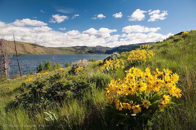 Photo by Arnie Brokling_fremont lake and
