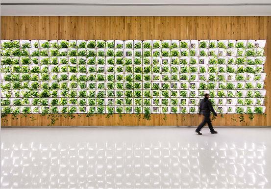 PSAC II Bioremediation Walls