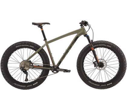 Fat bikes available for sale