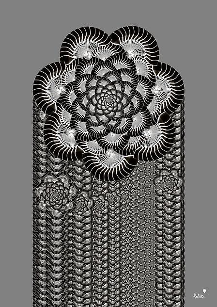 Ascending Flower
