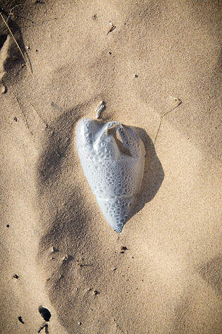 beached heart