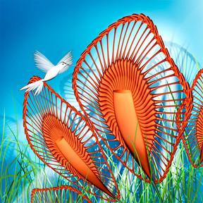 Hummingbird_In_Paradise.jpg