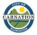 carnation 2.PNG