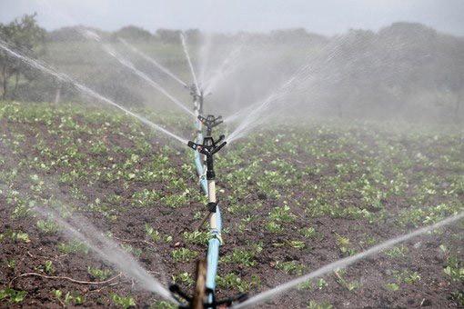 Charlotte Irrigation Company