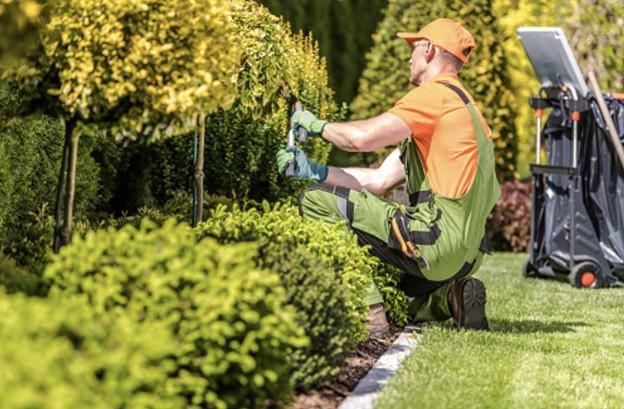 Charlotte Landscaping Jobs