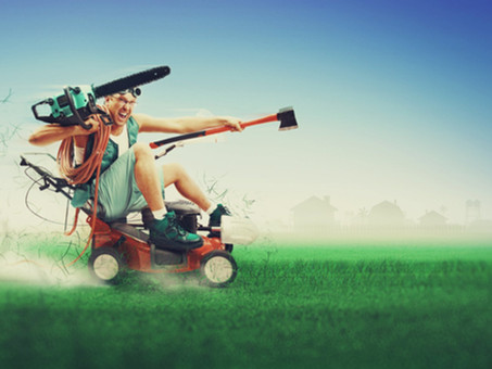 Top Reasons To Use Charlotte Lawn Care & Landscaping