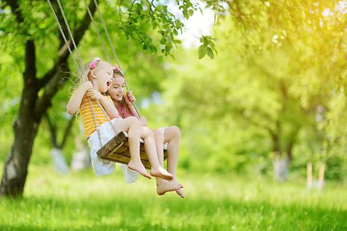 Backyard swing charlotte lawn care