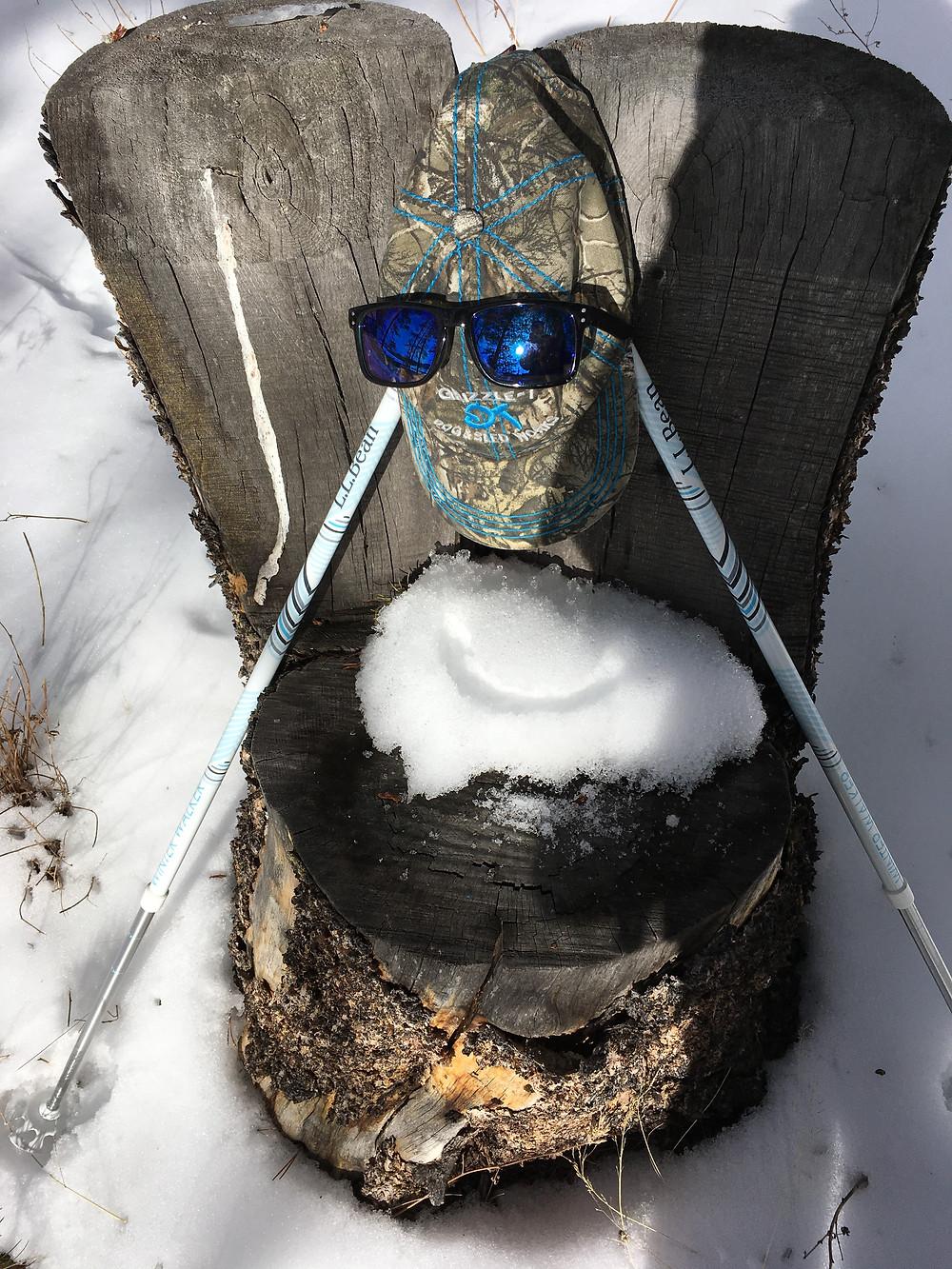tree healing, snowshoeing