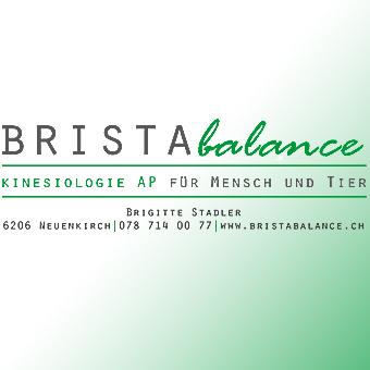 brista_web_neu