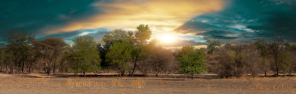 bigstock-typical-african-landscape-in-s-