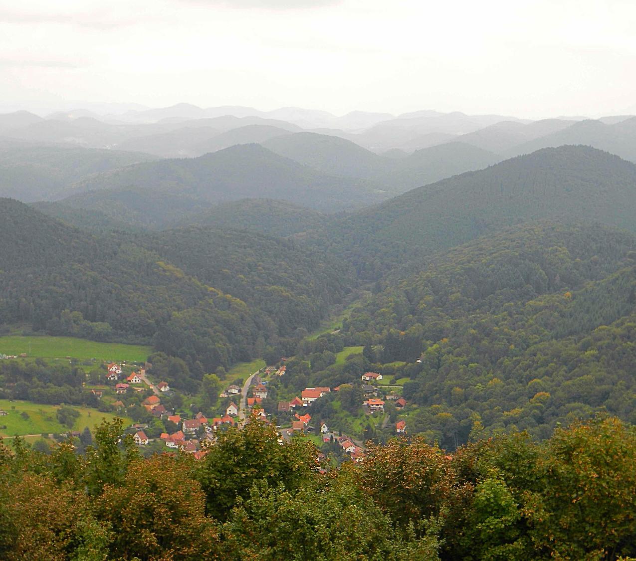 Pfalz, Pfälzerwald