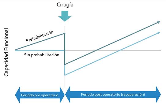 prehabilitacion.PNG