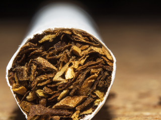 2005 Tütün