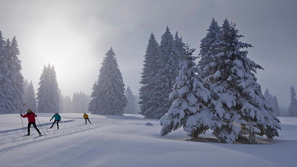 ski de fond saison.jpg