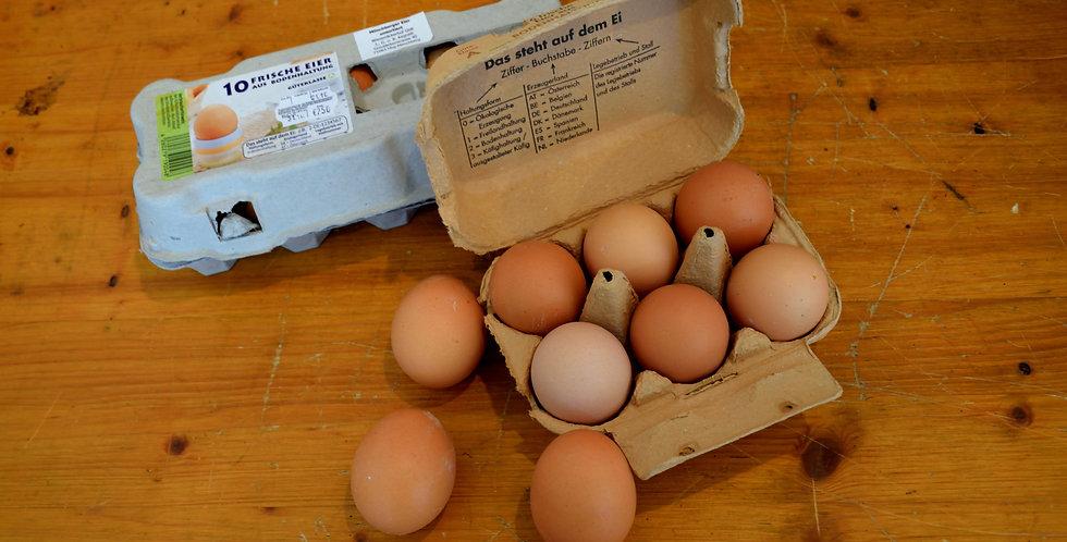 Eier 6er-Packung