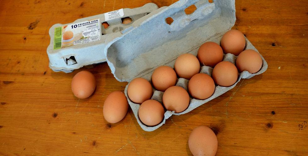 Eier 10er-Packung