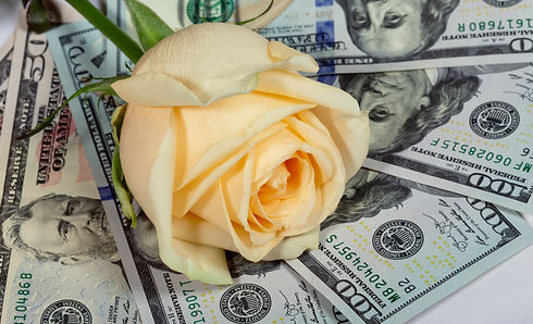 Jasmine Rose Money.jpg