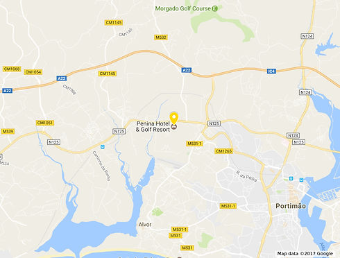 penina map image.jpeg