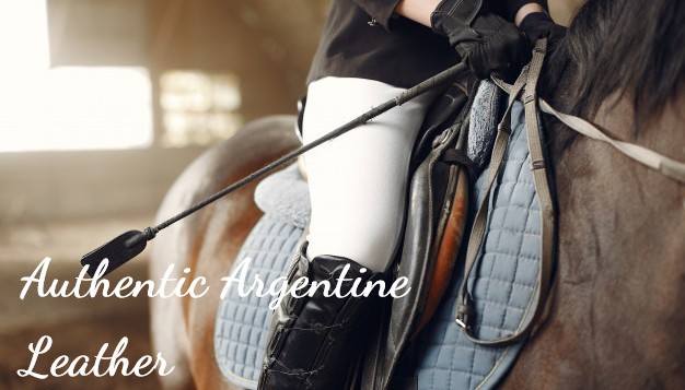 jinete-entrena-caballo_1157-27940_edited