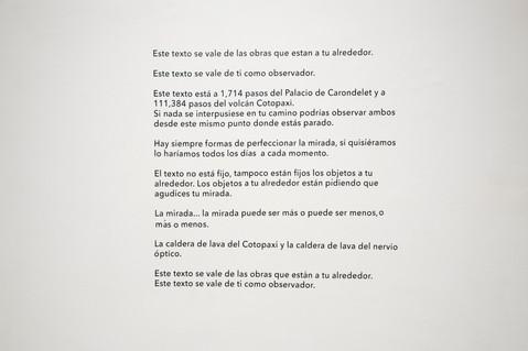 La mirada/ Incendiario (de la serie Suplementos textuales)  Óxido sobre papel, Vinil sobre pared y video proyección 2015