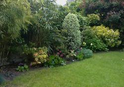 The back garden mixed border